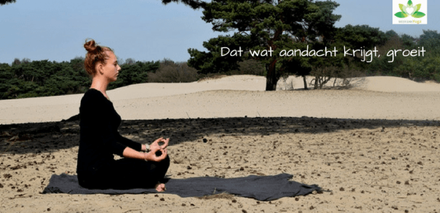 yoga yogaweekend Utrecht Soest ontspannen wellness relaxation beauty culinair retreat retraite Dru yoga