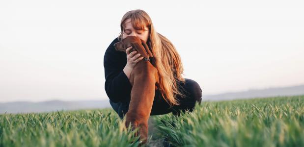 Doga: Yoga met je hond
