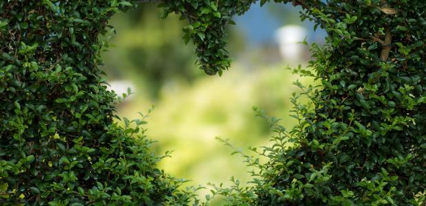 valentijnsdag liefde yoga