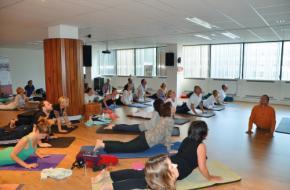 Ayuryoga op Internationale Yoga Dag. Bron: EISRA