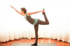 Integrale Yoga Nederland