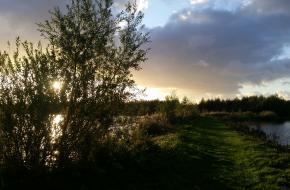 Locatie aan het water in De Biesbosch. Foto Shirley de Koster