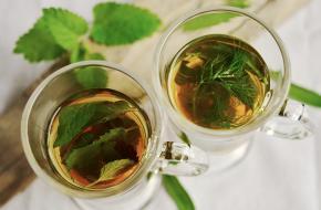 thee detox yoga resort tea informatie