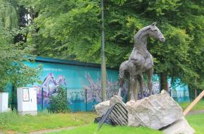 Majestueus paard. Foto Klaartje Grol