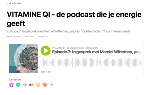 Vitamine QI podcast Hans Vos interviewt Marciel Witteman