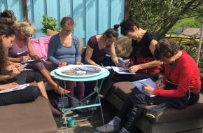 Dolfijn Wellness groep vrouwen