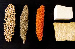 Goede bronnen voor eiwitten. Foto door Gesina Kunkel via Unsplash