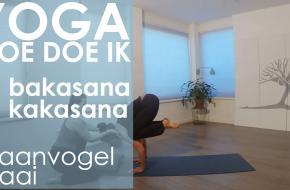 yoga video kraai balans kraanvogel lastig