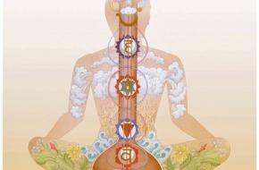 svar yoga chakra institute shri Shyamji Bhatnagar ademhaling