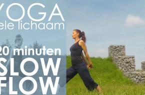 yoga slow flow estayoga youtube